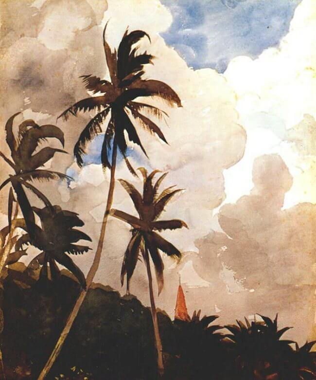Palm Trees Bahamas - by Winslow Homer