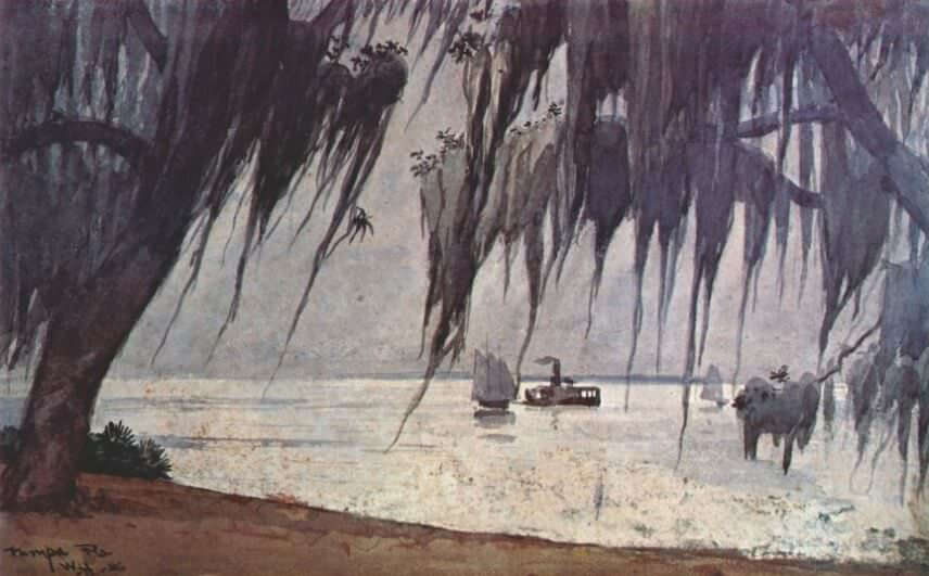 Spanish Moss at Tampa - by Winslow Homer